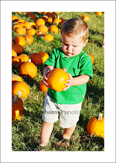 Nathan_picking_pumpkin_web